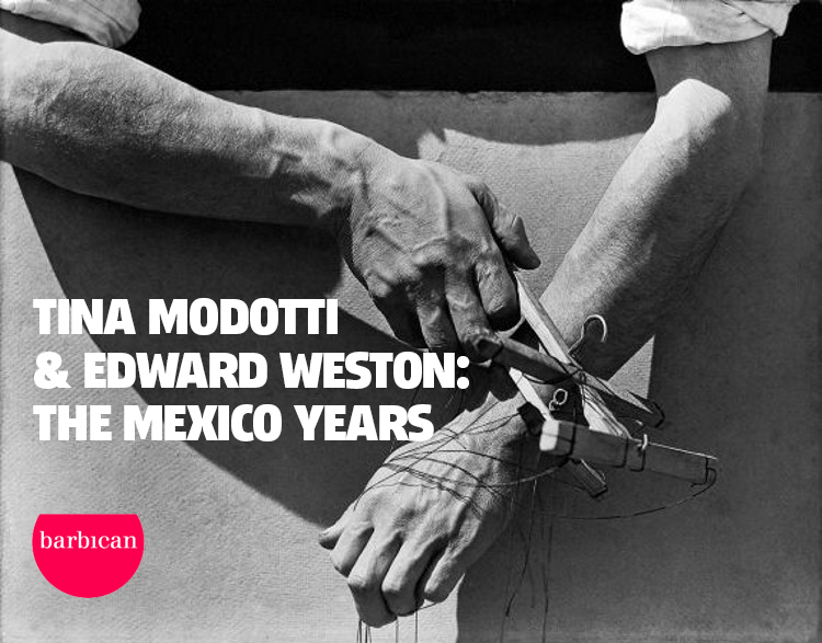 8d0db-tina-modotti-hands-of-the-puppeteer copy